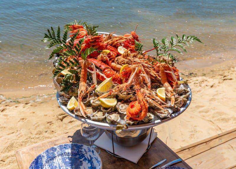 盖帽白鼬法国,在阿尔雄海湾的边缘的海鲜盘子 免版税库存图片