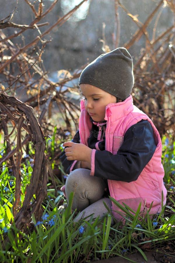 盖帽的哀伤,被触犯的,温暖地加工好的女孩坐她的在蓝色snowdrops中花的膝盖在葡萄园里 免版税库存图片