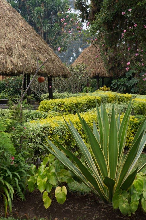 盖的风雨棚在卢旺达 免版税库存照片
