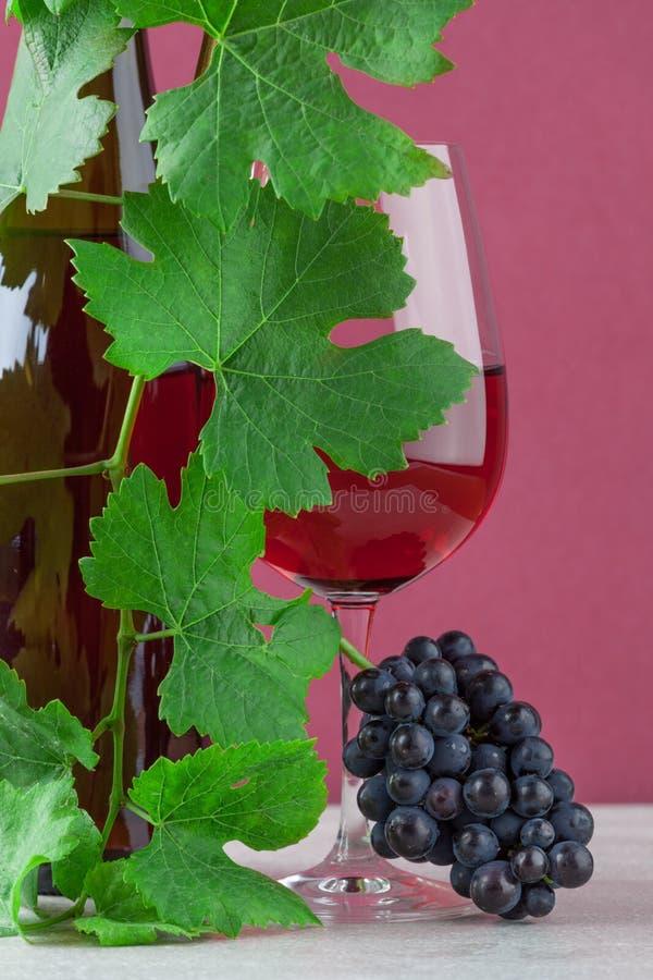盖红葡萄酒瓶和玻璃的藤用束成熟葡萄 图库摄影