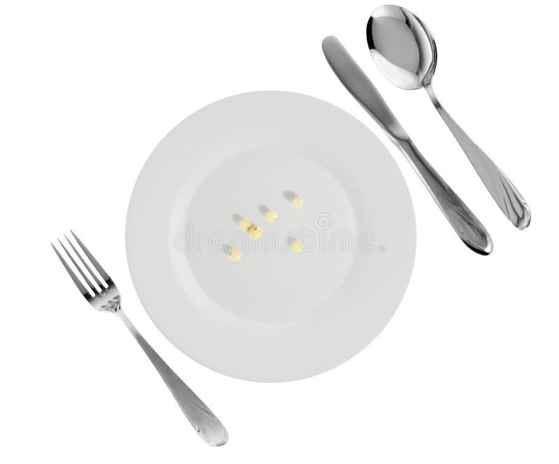 盘小米素食主义者 图库摄影