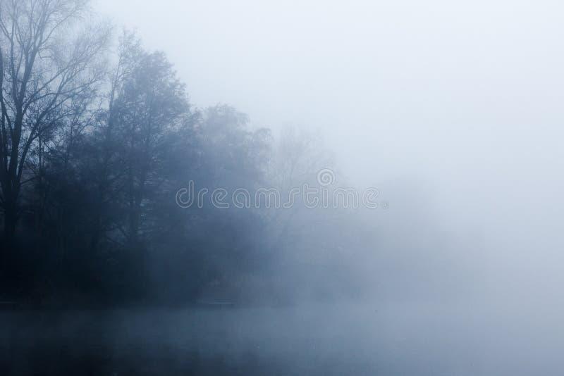 盘旋在一个冷的湖的薄雾在Goldsworth公园,萨里, Wokin 免版税图库摄影
