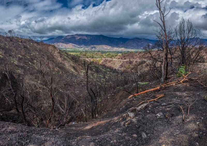 盘旋在被烧的区域的下雨天 免版税库存照片