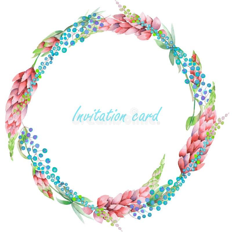 盘旋框架,与花卉设计的花圈;桃红色凶猛花和抽象含羞草花的水彩花卉元素 皇族释放例证