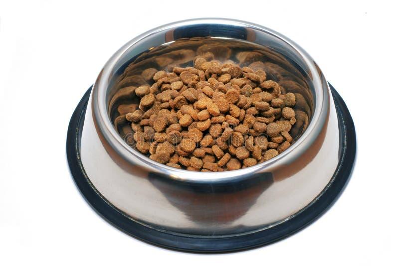 盘食物宠物 免版税库存图片