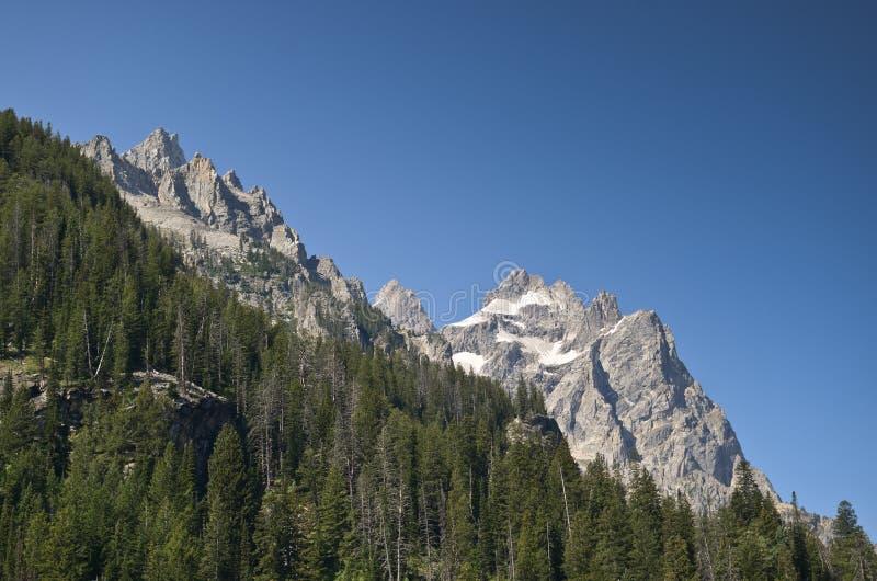 盛大Teton国家公园风景 库存图片