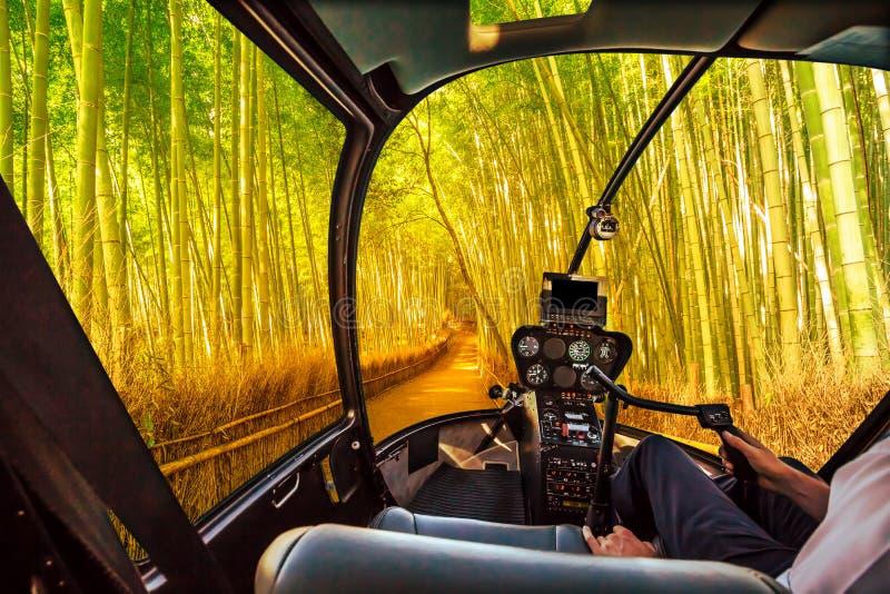 直升机在Arashiyama竹子树丛里 库存图片