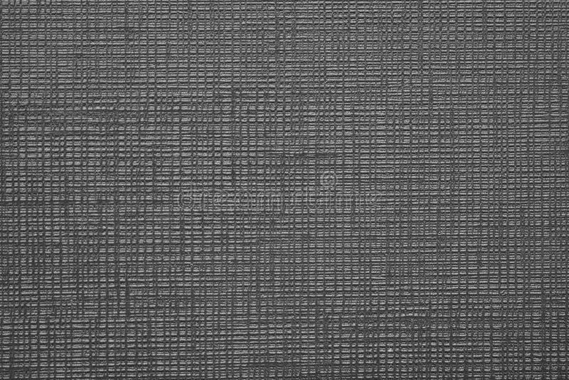 相交的实线黑白纹理  免版税库存照片