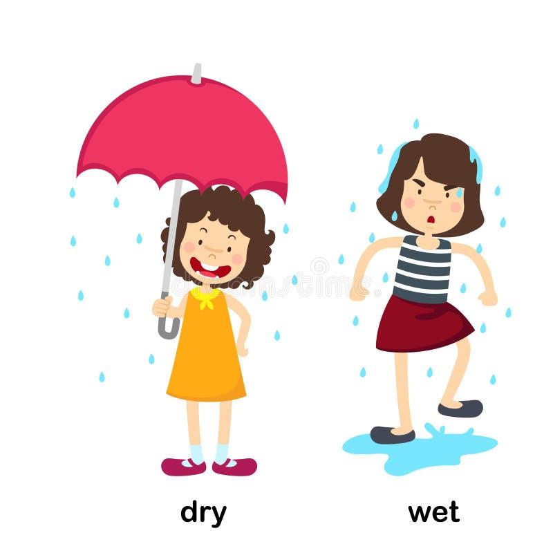相反干燥和湿 库存例证