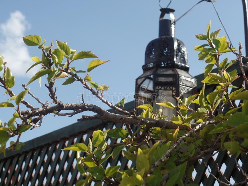 相当在一个室外屋顶大阳台的摩洛哥灯在马拉喀什 库存照片