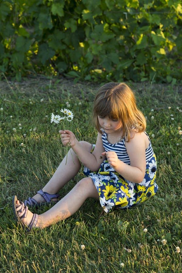 相当坐在草坪的夏天礼服的小女孩在下午金黄光末期 免版税库存照片