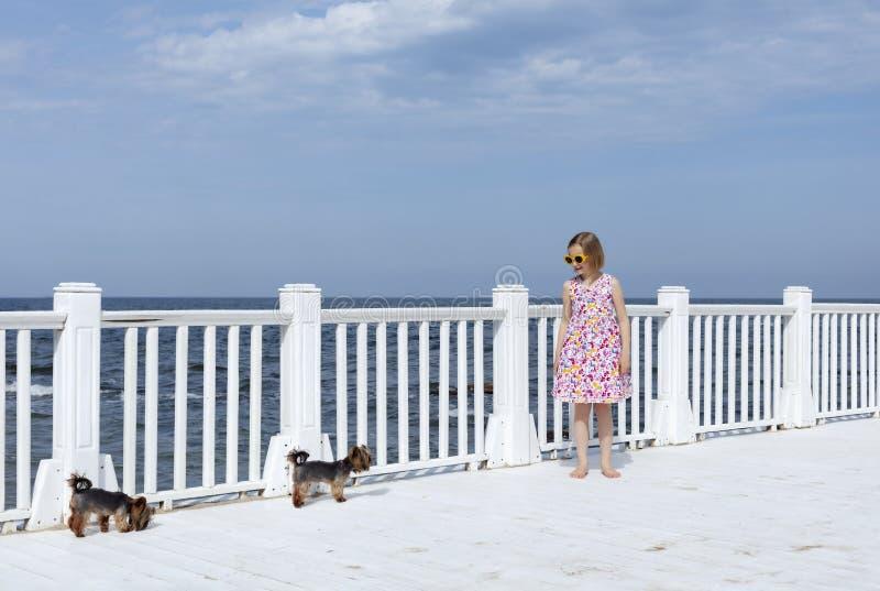 相当小8岁快乐的女孩有一个花卉图案的一件礼服的和与小犬座的黄色太阳镜立场的在a 库存图片