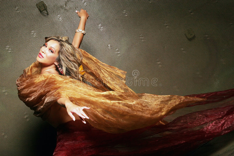 相当性感的丝绸妇女 免版税图库摄影