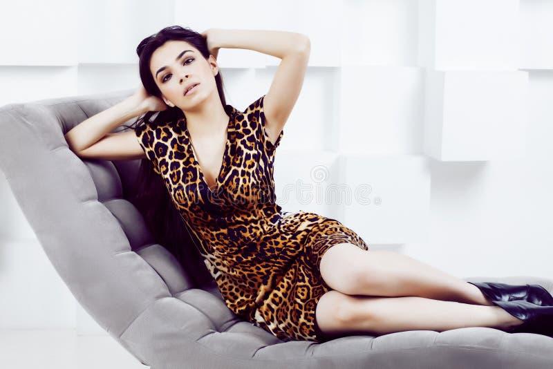 相当时尚礼服的时髦的妇女有在luxu的豹子印刷品的 库存图片