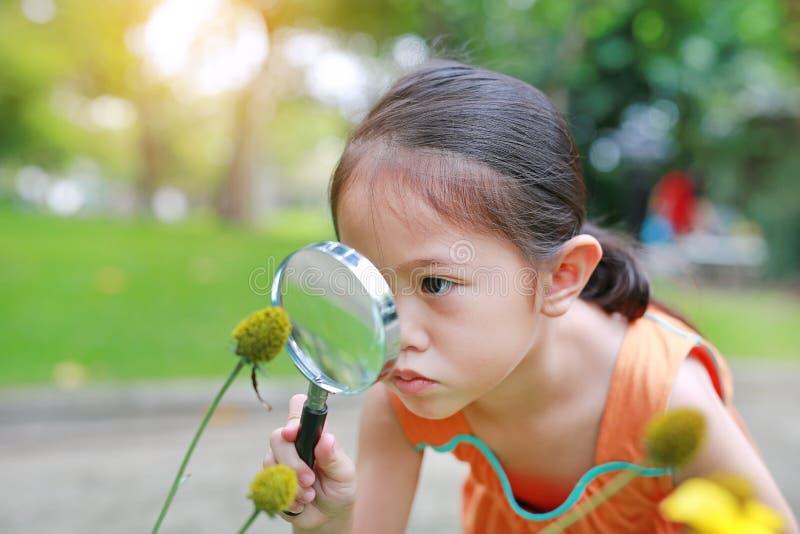 相当有放大镜看看的一点亚裔儿童女孩花在夏天公园 免版税库存图片