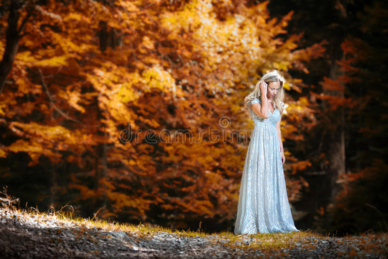相当有空白礼服的白肤金发的神仙的夫人 免版税库存图片