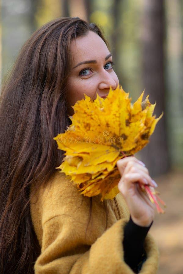 相当走在秋天公园叶子秋天的少妇放松现代休闲的时尚 库存照片