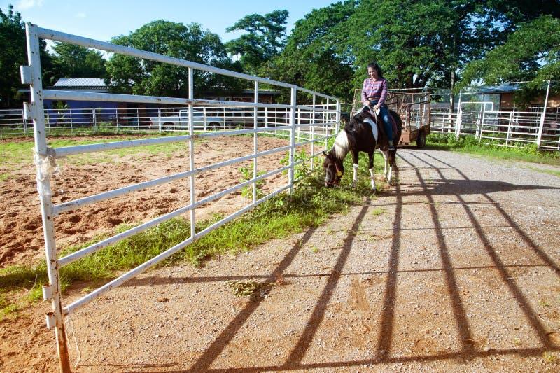 相当骑马的亚裔妇女女牛仔户外在农场 免版税图库摄影