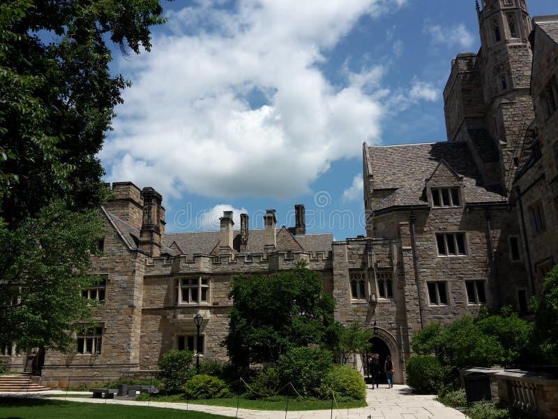 看与美丽的天空和树的老时尚大厦 免版税库存图片