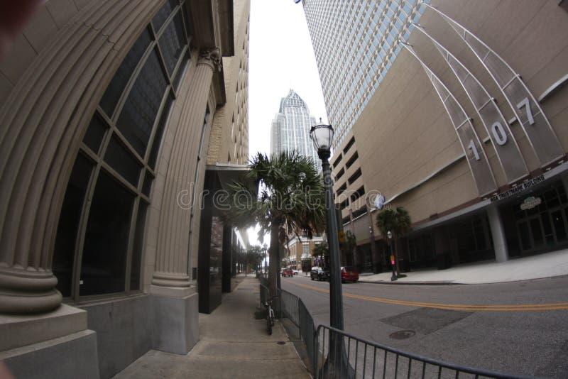 看两个大厦 免版税库存照片