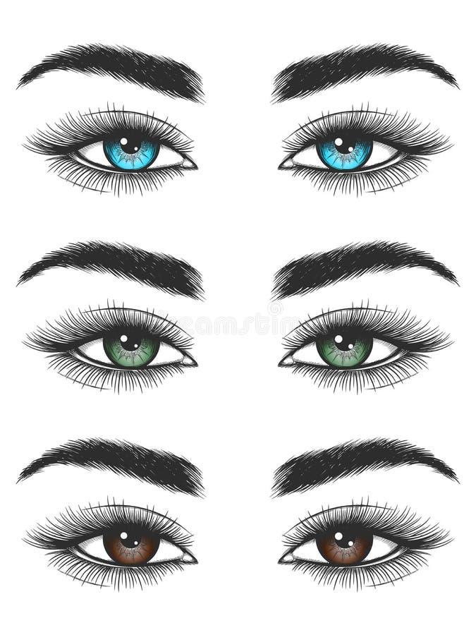 看五颜六色的女性眼睛 皇族释放例证