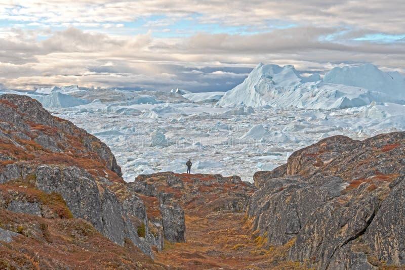 看从贫瘠岩石的Icefjord 免版税库存照片