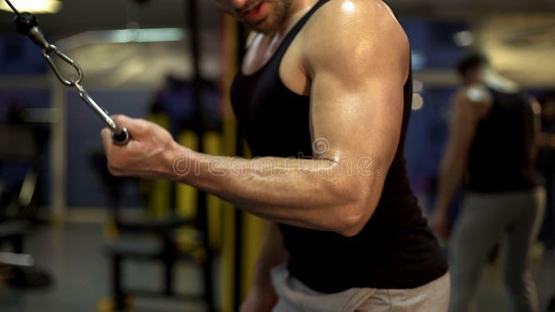 看他的二头肌在健身房折叠式的期间,健身休闲,体育的肌肉人 免版税库存图片