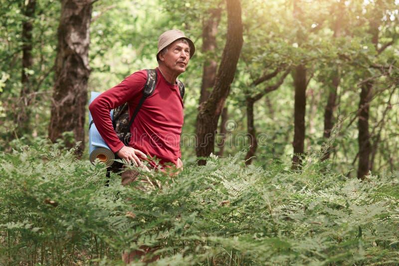 看体贴的沉思的旅行家室外射击在旁边,集中于他的旅行,寻找从森林的出口,佩带 库存图片