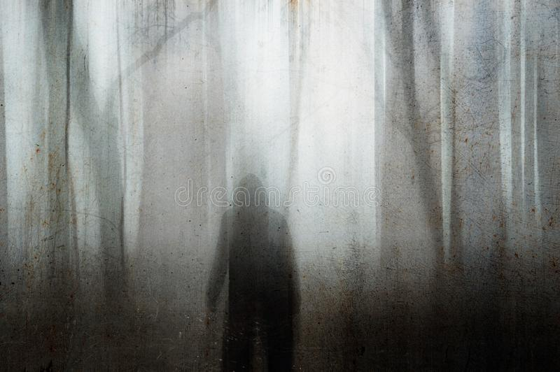 看入一个鬼的森林的一个戴头巾图在一个有雾的冬日 一个粒状无言被弄脏的摘要编辑 库存图片