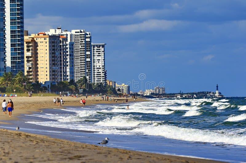 看北部对鲳参海滩佛罗里达 免版税库存照片