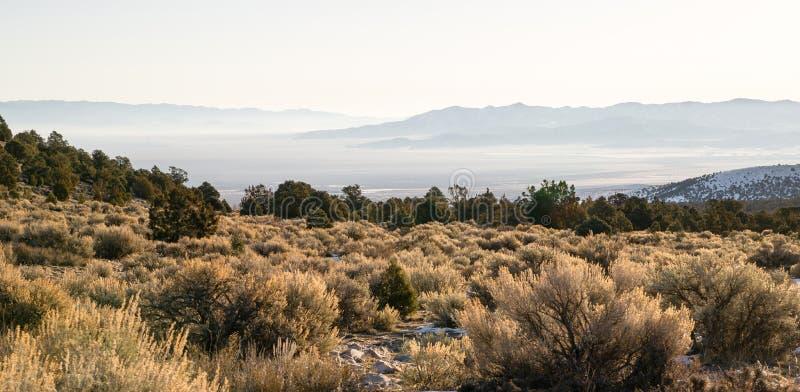 看在山下到西南伟大的水池内华达的沙漠里 免版税库存照片
