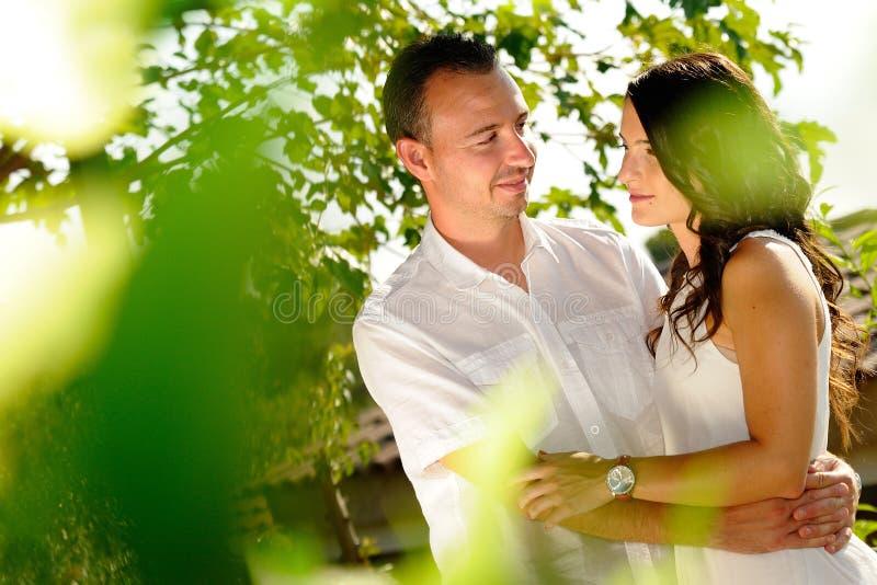看在树中的年轻夫妇同犯 库存照片