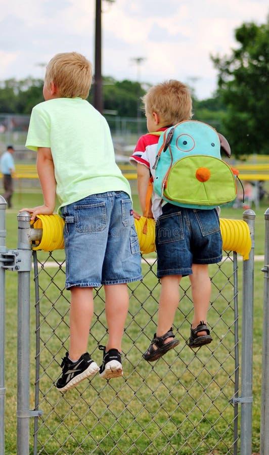 看在棒球场上的篱芭的小男孩 免版税库存图片