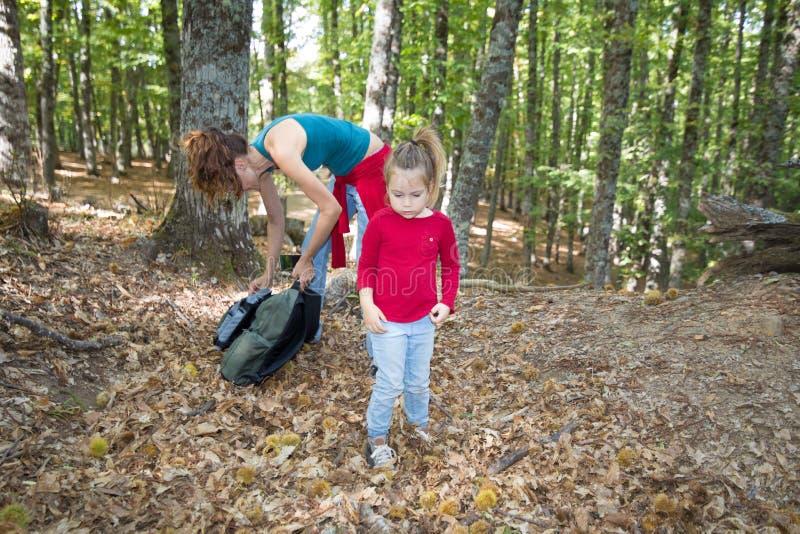 看在森林的孩子在秋天在有背包的母亲附近 免版税图库摄影
