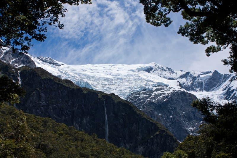 看在瓦纳卡附近的罗伯罗依冰川在新西兰 免版税图库摄影