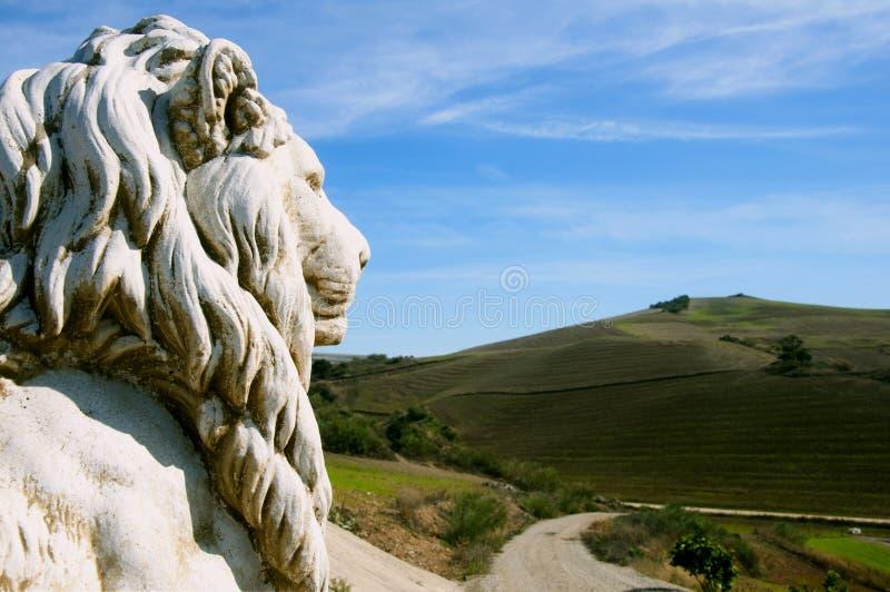 看在领域backgrou的狮子雕塑头路 免版税库存图片