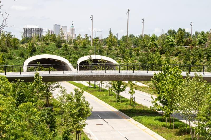 看在高速公路隧道和步行天桥在公园和阿肯色河附近有最近被种植的树和野花的和 图库摄影