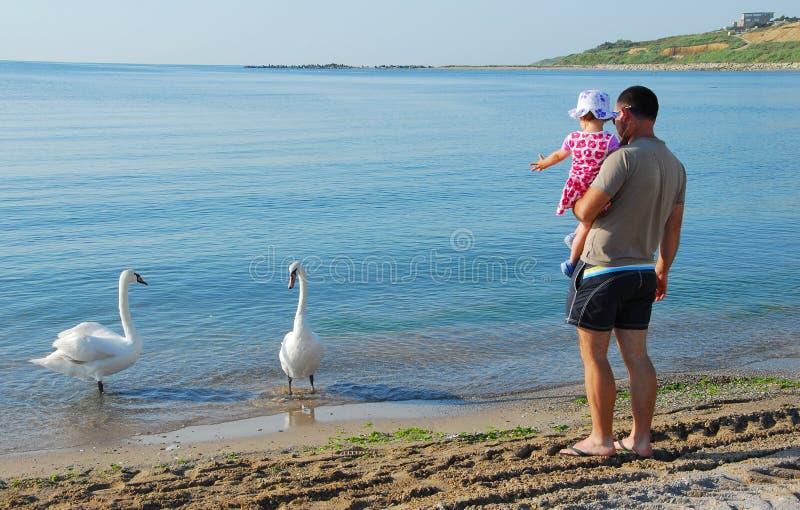 看天鹅的父亲和女儿 免版税库存图片