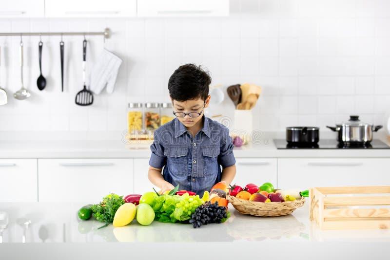 看对堆的年轻亚裔男孩假水果和蔬菜  库存图片