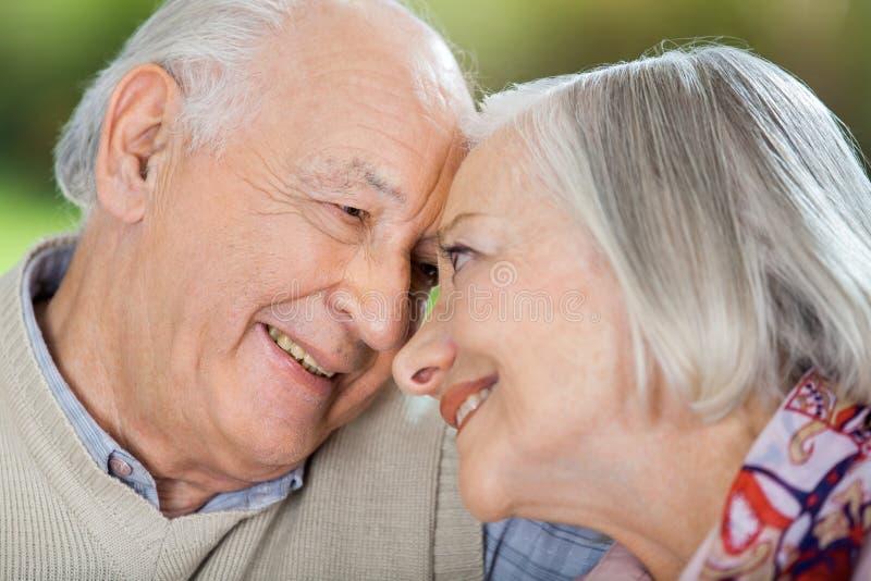 看彼此的愉快的资深夫妇 免版税库存照片