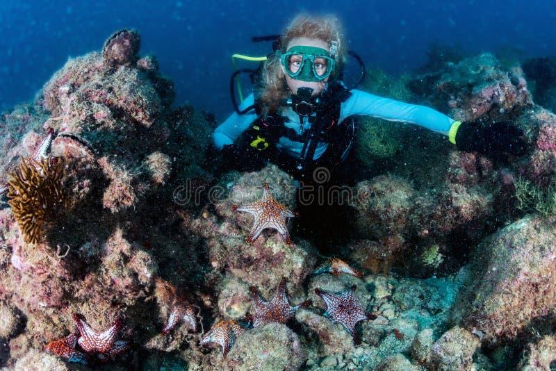 看您有红海的秀丽白肤金发的潜水者女孩担任主角 免版税库存照片