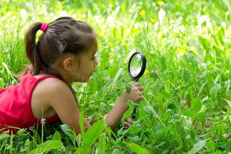 看放大镜的小女孩探索的自然 图库摄影