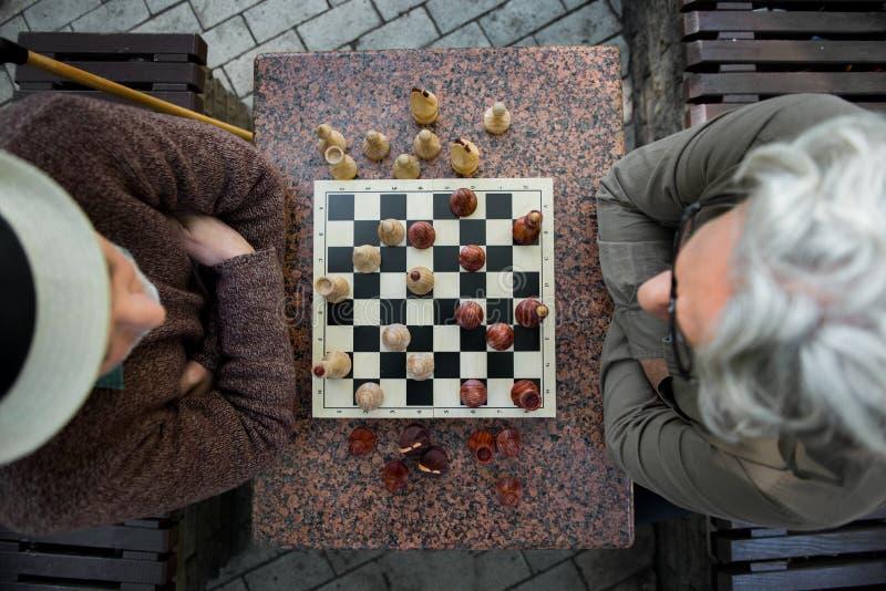 看有集中的沉思老男性领抚恤金者棋枰 免版税库存图片