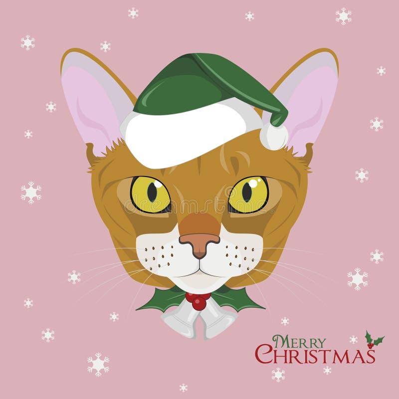 看板卡圣诞节问候 与绿色圣诞老人` s帽子和圣诞节装饰品的埃塞俄比亚猫 库存例证