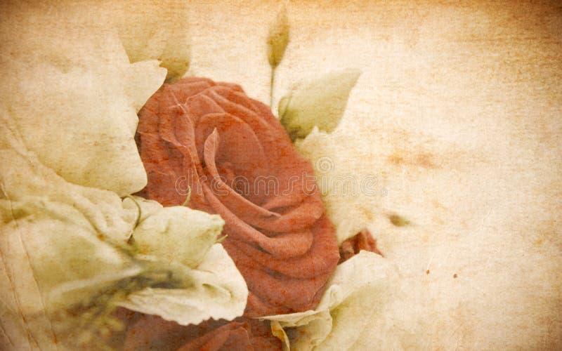 看板卡玫瑰色葡萄酒 库存照片