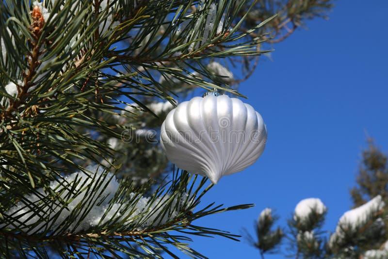 看法从下面在一棵室外云杉的树的银色圣诞节电灯泡 图库摄影