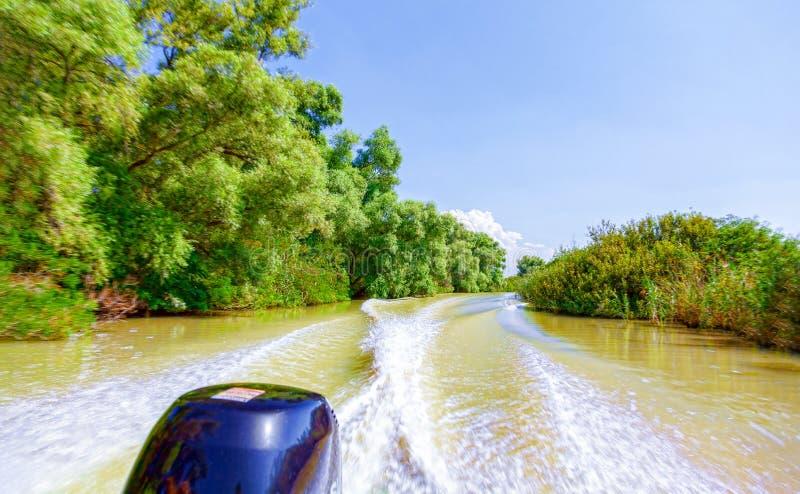 _看法从这汽艇对这美丽自然和这河 免版税库存照片