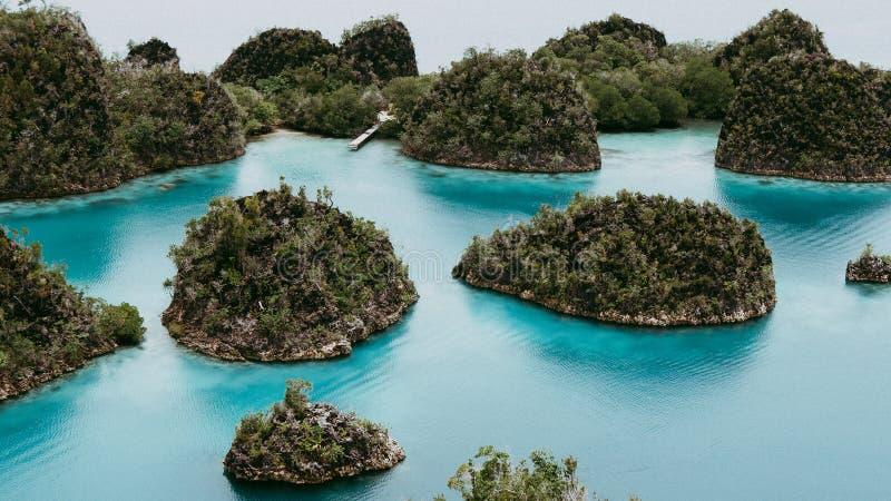 看法从Pianemo海岛顶面观点长满与密林植物,包围由浅蓝色海洋盐水湖 免版税库存图片