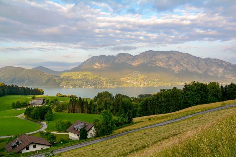 看法向有绿色牧场地草甸和阿尔卑斯山脉的湖Attersee在Nussdorf萨尔茨堡,奥地利附近 库存图片