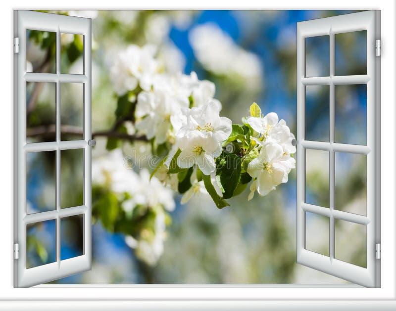 Download 看法窗口开花的树 库存照片. 图片 包括有 bossies, 开花, 天空, 叶子, 女衬衫, 自然, beautifuler - 72359084